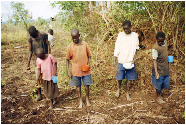 Children planting crops in Adwila, Uganda